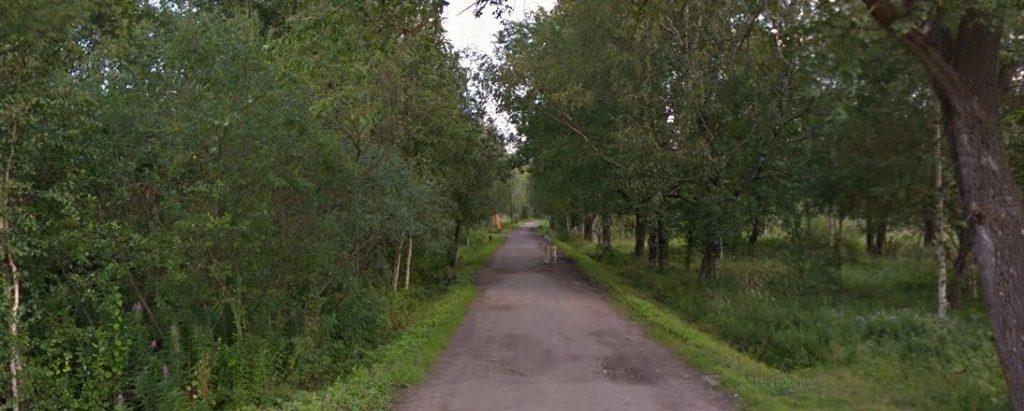 Лесная улица